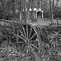Wagon In The Woods by Steve Gass