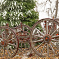 Wagon In Winter by Amanda Smith