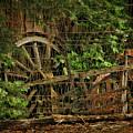 Wagon Wheel by Blake Richards