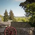 Wagon Wheel County Clare Ireland by Teresa Mucha