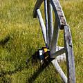 Wagon Wheel In Grass by Chris Brannen