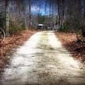 Wagon Wheel Lane by Brian Wallace