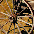 Wagon Wheel by Perry Webster