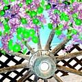 Wagon Wheel by Will Borden