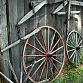 Wagon Wheels by Joanne Coyle