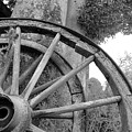 Wagon Wheels by Robert Lacy