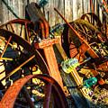 Wagons Whoa by Darin Williams
