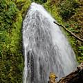 Wahkeena Falls At Footbridge, Oregon by Aashish Vaidya