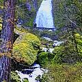 Wahkeena Falls by Douglas Settle