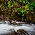 Wahkenna Creek by Harry Spitz