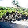 Waianapanapa Black Sand Beach Pailoa Bay Hana Maui Hawaii by Sharon Mau
