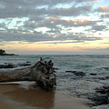 Wailua Bay  by Kelly Wade