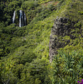 Wailua Falls And Tropical Plants by Robert Potts