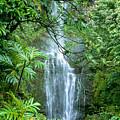Wailua Falls by Greg Vaughn - Printscapes