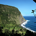 Waimanu Valley On Hawaii by Brendan Reals
