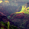 Waimea Canyon by Kevin Smith