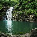 Waimea Falls by Charmian Vistaunet