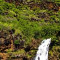 Waimea Falls  by Jon Burch Photography