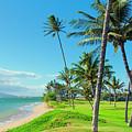 Waipuilani Beach Kihei Maui Hawaii by Sharon Mau