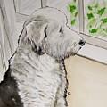 Waiting For Dad by Carol Blackhurst