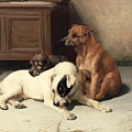Waiting For Master by William Henry Hamilton Trood