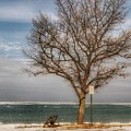 9002 - Waiting For Spring In Caseville by Sheryl Sutter