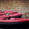 Waiting Kayaks by Robert Anastasi