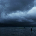 Waiting Out The Storm by Linda Shafer