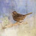 Waiting To Happen - Bird Art by Jordan Blackstone
