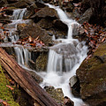 Walden Creek Cascade by Paul Rebmann
