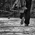 Walk Alone by Ilias Kordelakos
