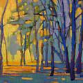 Walk In The Woods 3 by Konnie Kim