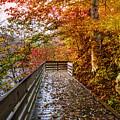 Walk Into Autumn by Debra and Dave Vanderlaan