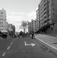 Walk On Quito by Kyara Vitro