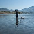 Walk On Water by Peter Olsen