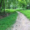 Walk The Path by Kristina Randal