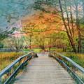 Walk To The Lake In Watercolors by Debra and Dave Vanderlaan