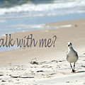 Walk With Me by Shirley Sykes Bracken