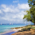 Walking Along The Beach, Holetown, Barbados by Eric Drumm