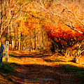 Walking Down The Autumn Path by Jeff Folger