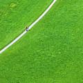Walking Footpath In A Green Field by Dvoevnore Photo