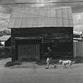 Walking In Leadville by Jim Furrer
