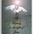 Walking In The Light Of Jesus by Leticia Latocki