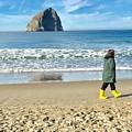 Walking On The Beach by Susan Garren