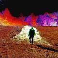 Walking Rocky's Field by Cliff Wilson
