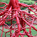 Walking Roots Sculpture by Gayle Miller