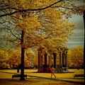 Walking Salem Common by Jeff Folger