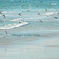 Walking The Beach by Terri LeSaint-Keller