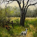 Walking With My Farley by Jim Gola