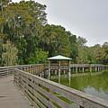 Walkway At Lake Dora by Deborah Good